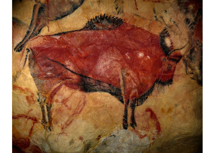 Photo pre-historic painting - bison