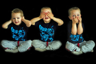 proverb - see no evil, hear no evil, speak no evil