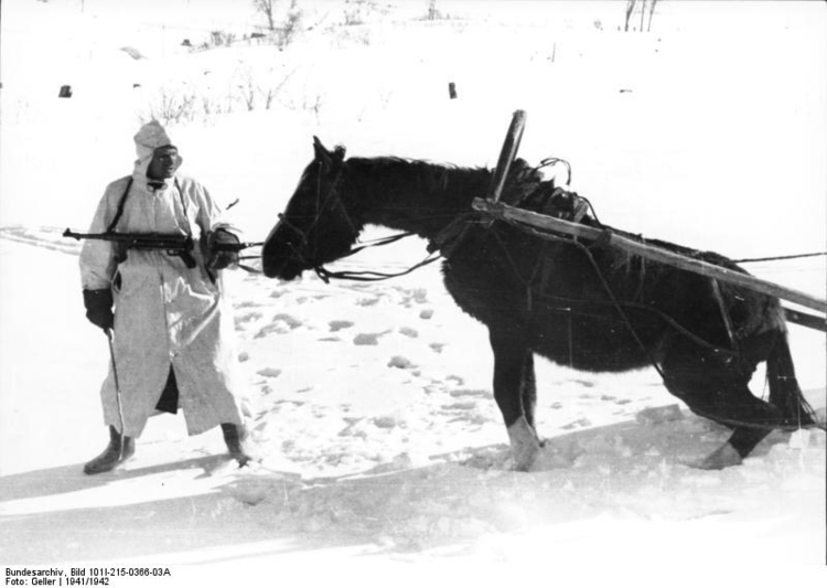 Photo Russia - Soldier with horse in winter
