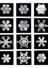 Photo snowflake - ice crystal