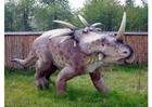 Photo Styracosaur replca