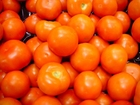 Photo tomatoes
