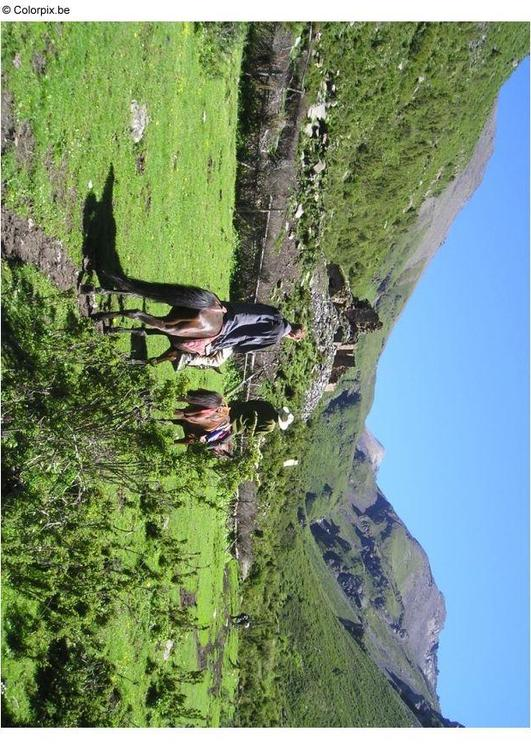 travel on horseback