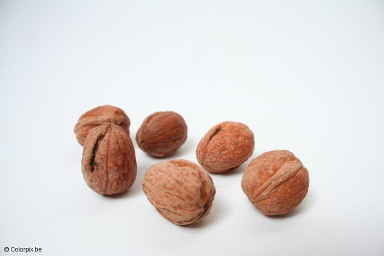 Photo walnuts