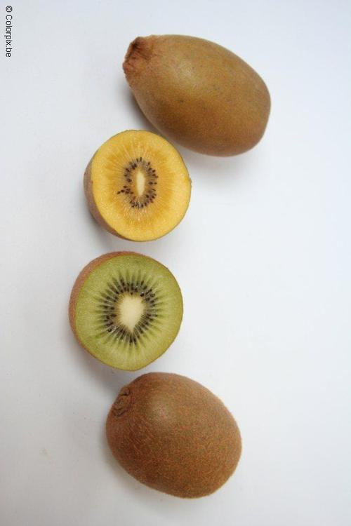 yellow and green kiwi