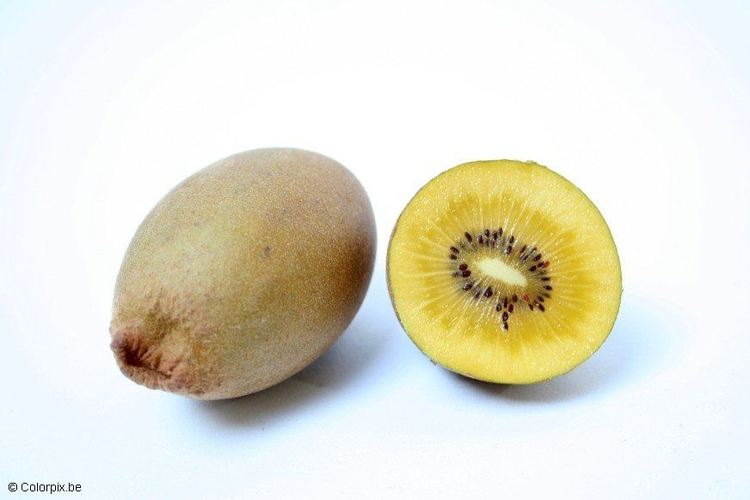 Photo yellow kiwi